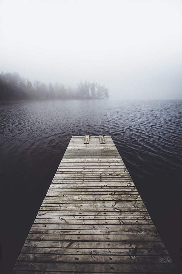 fading_into_the_mist