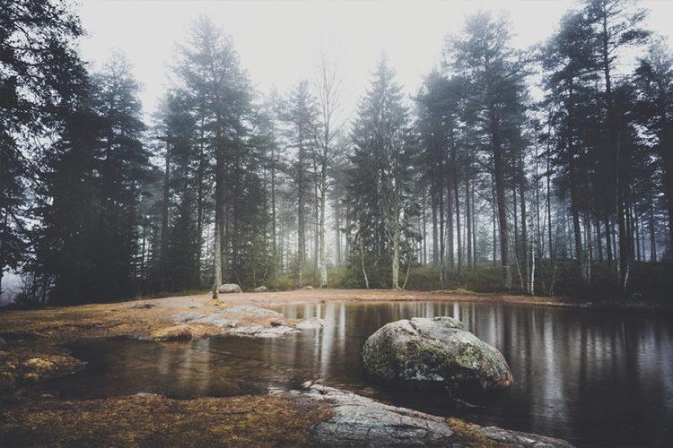 moody_mornings