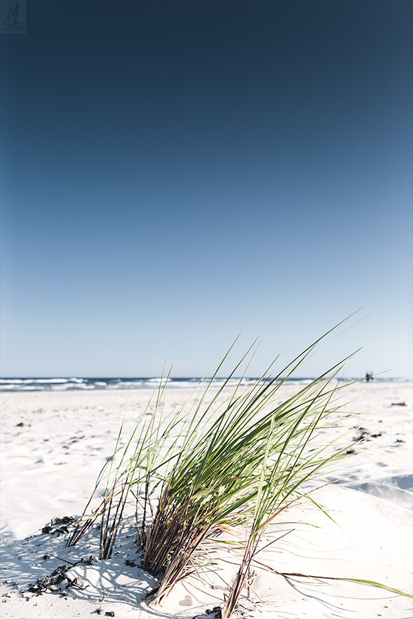 web_beachy_6