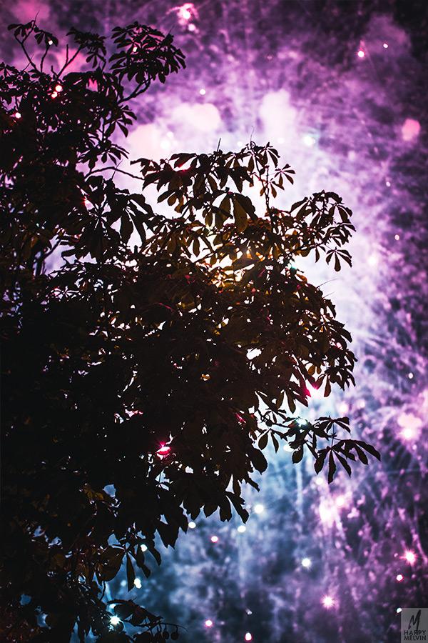 web_fireworks2