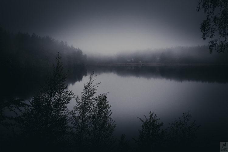 web_foggylakes