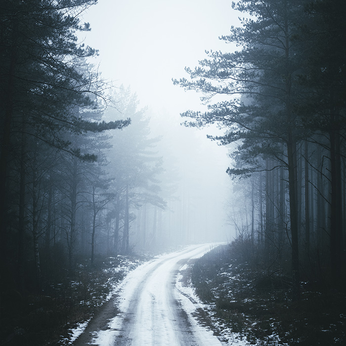 front_square_winter_road_forest