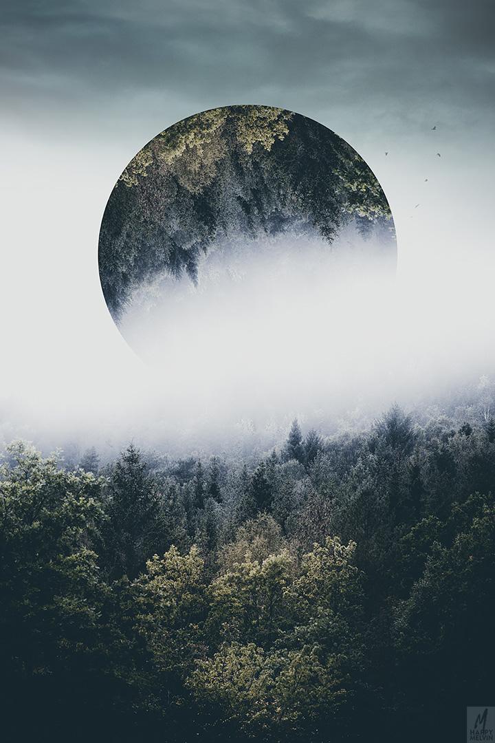 web_forest_fog_moon2